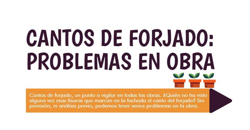 PORTADA DE PROBLEMAS EN OBRA CON LOS CANTOS DE FORJADO